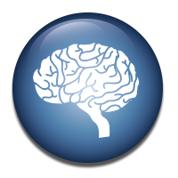3D Analysis of Brain structures and Plaque Analysis in Alzheimer´s disease.